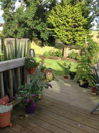 Harrisons of Greyabbey: Our garden