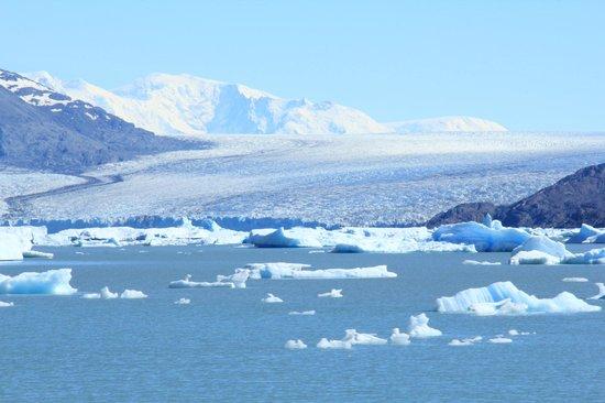 Onelli Glacier: Ghiacciao Upsala
