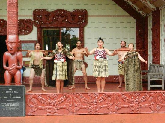 Waitangi Treaty Grounds: A