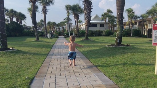 Four Points by Sheraton Destin- Ft Walton Beach: Grounds - beautifully maintained