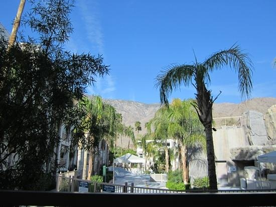 Palm Canyon Resort & Spa: beautiful day on patio