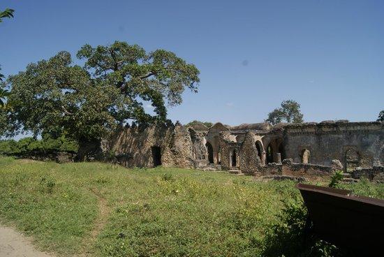 Kilwa Kisiwani: De grote moskee met de baobapboom die daarin groeit