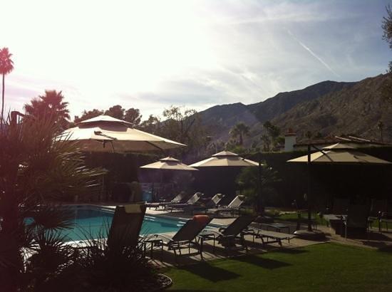 poolside Desert Riviera Hotel