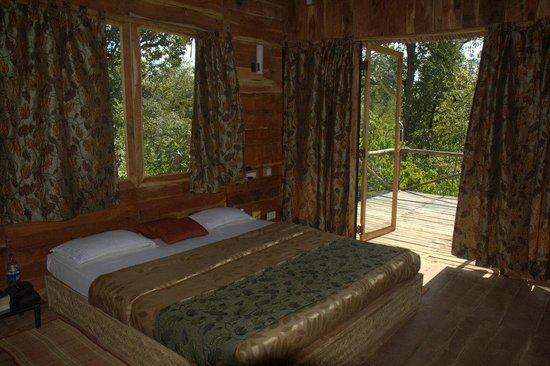 Tribal Camp: Room
