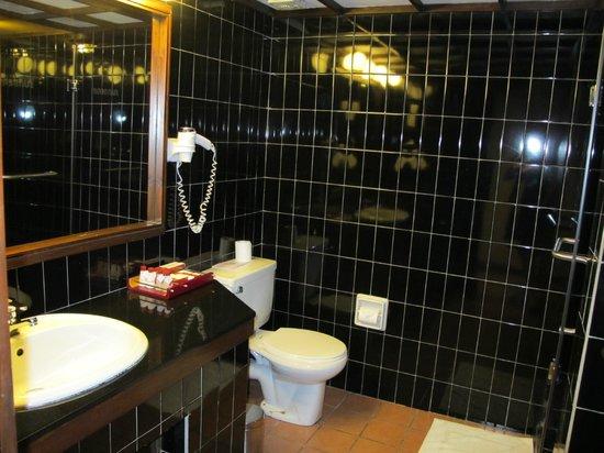 Cinnamon Citadel Kandy: badkamer