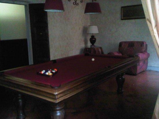 Palazzo Magnani Feroni: billiard room