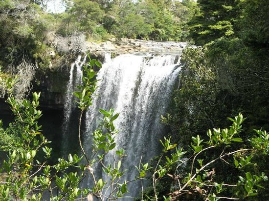 Kerikeri Holiday Cottages - Ragdoll & Black Cat: Rainbow falls