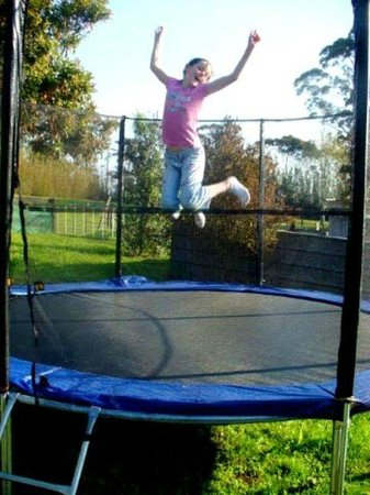 Kerikeri Holiday Cottages - Ragdoll & Black Cat: the trampoline