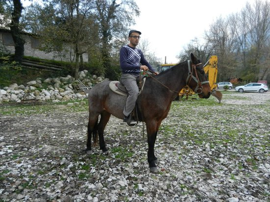 Italy Farm Stay: Horseback riding brief orientation.