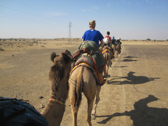 Residency Centre Point Guest House and Desert Safari: Camel safari!