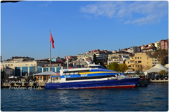 Bosphorus Cruise Day Trips: Nice view