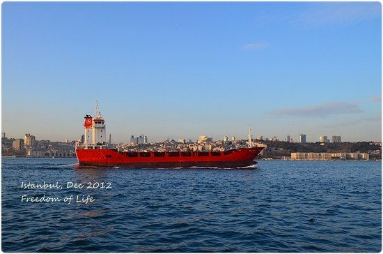 Bosphorus Cruise: I like color of the sea
