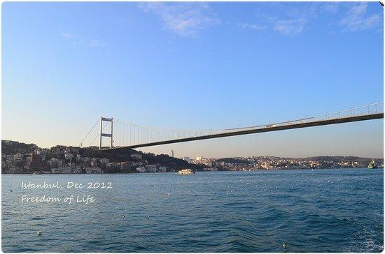 Bosphorus Cruise: Near the bridge
