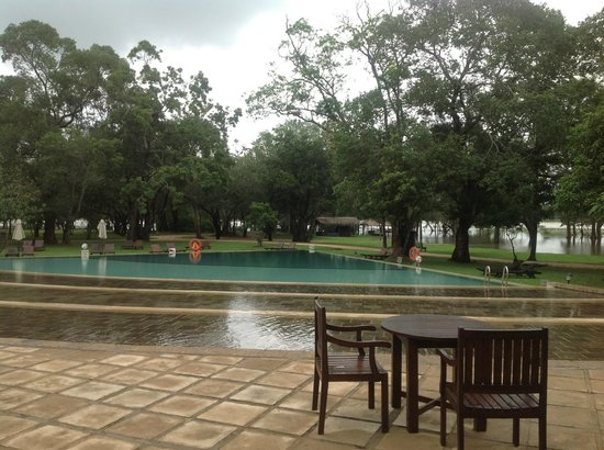 Habarana Village by Cinnamon: View from the Lounge/ dinning area