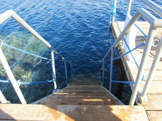 Falcon Hills Hotel: спуск в воду