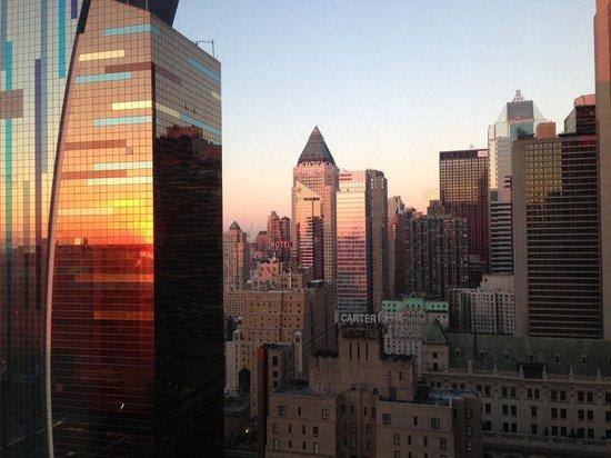 Hilton Times Square: Room Veiw