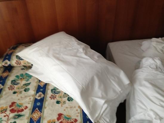 Al Giardino : cuscino di sasso