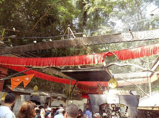 Templo Dakshinkali: temple roof