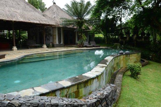 Gaya Villas at Gaya Fusion: pool