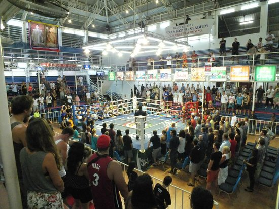 Patong Boxing Stadium : View from the stands