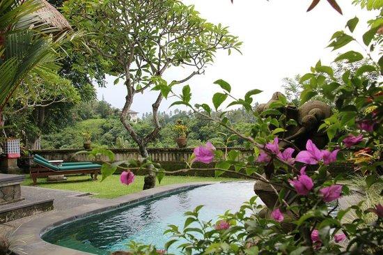 بيتا ماها: Pool Garden Villa 201