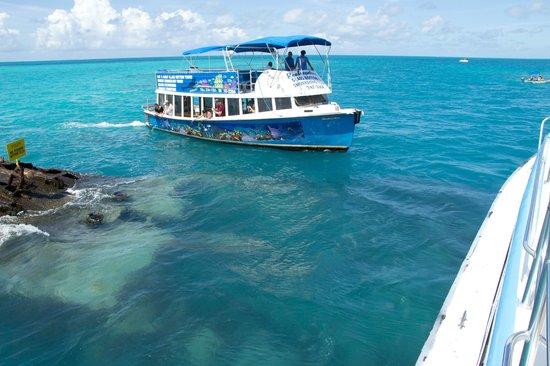 Bermuda Tour Of Boat De Another ExplorerHamiltonView Foto Reef IYbf7myg6v