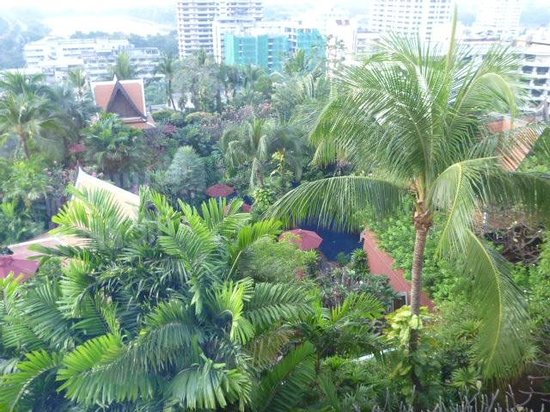 Sheraton Grande Sukhumvit, A Luxury Collection Hotel: View to Pool from room