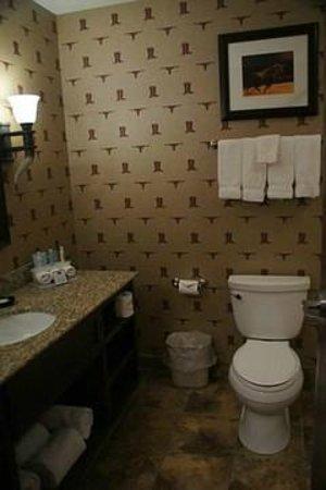 Holiday Inn Express Hotel & Suites Kanab: Bad - beachten Sie die Tapete!