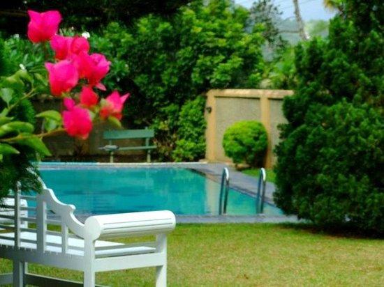 Swetha Villa : Pool