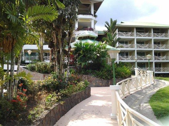 Gamboa Rainforest Resort: une allée de la piscine vers la bâtise