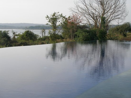 Evolve Back, Kabini: infinity pool