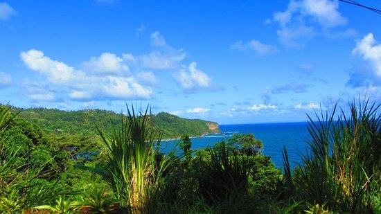 Calibishie Cove : View of Ocean