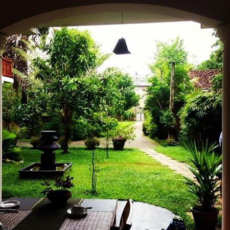 Unawatuna Nor Lanka Hotel: norlanka garden!