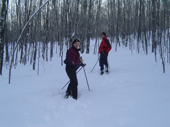 Blueberry Fields Bed & Breakfast: snowshoeing on our 2 miles of trails
