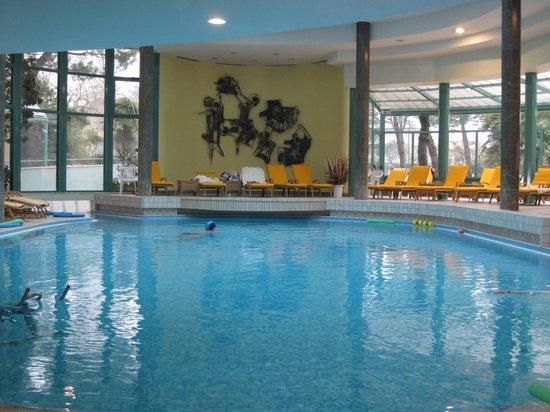 Hotel Bristol Buja: закрытый бассейн