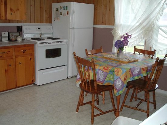 Highlyn View Chateau : Kitchen in Guest House