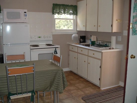 Highlyn View Chateau : Kitchen in Rosewood cottage
