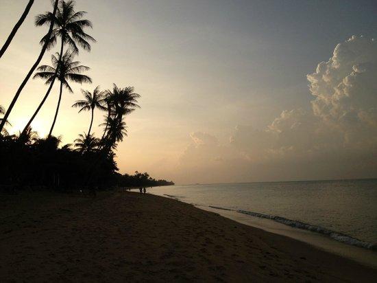 Health Oasis Resort: Beach in front of resort