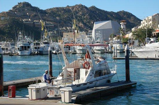 Solmar Sportfishing
