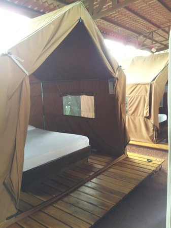 Arenal Backpackers Resort: Permanent tents