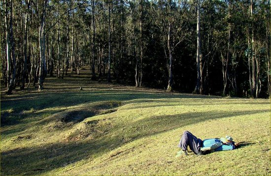 Shooting Point: Perfect Meadows For A Snooze