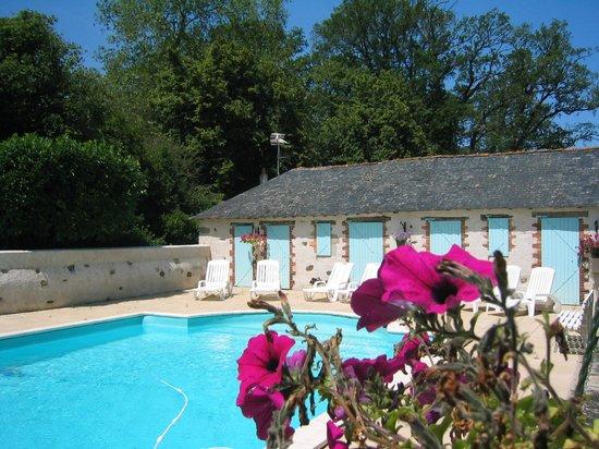 Chateau du Breuil: Piscine extérieure 6x12 m