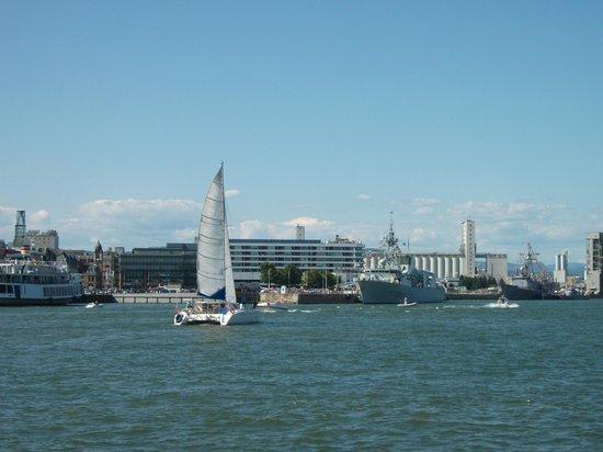 Old Port: Un port très actif