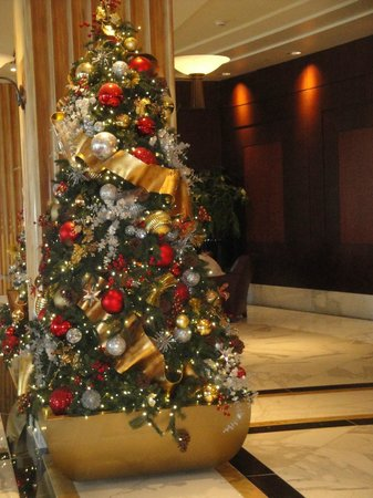 Gaylord National Resort & Convention Center: Holiday Christmas trees in hotel lobby (removed Jan.9, 2013)