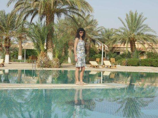Belere Hotel Erfoud: amplia piscina y hermoso parque