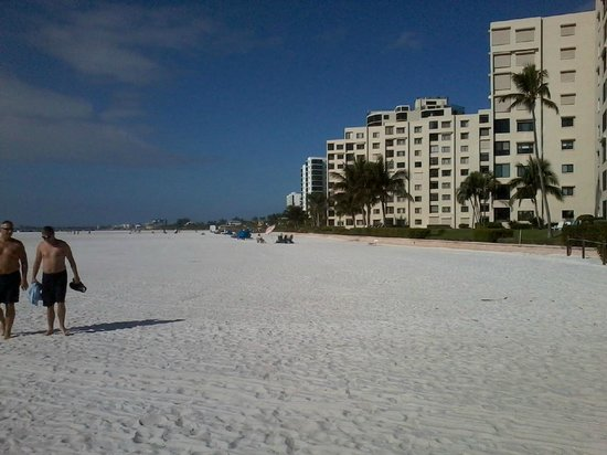 Foto De Wyndham Garden Fort Myers Beach Fort Myers Beach From Holliday Inn Beach Tripadvisor