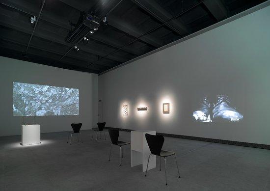 Fundacio Sunol : Nivell Zero, young artists exhibition room at the Fundació Suñol