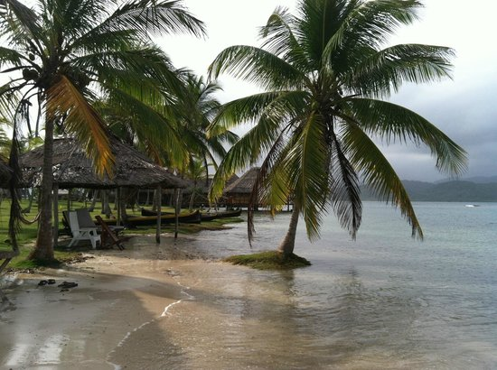 Yandup Island Lodge: The island's beach - perfect for relaxing