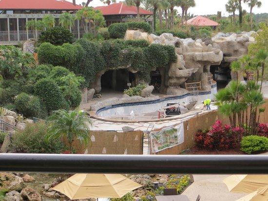 Hyatt Regency Grand Cypress: The main pool undergoing construction