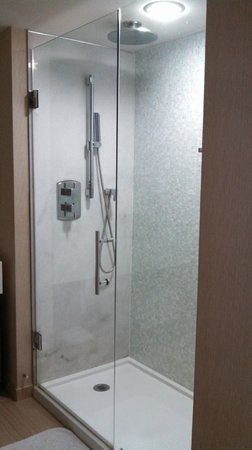 "Hyatt Regency Grand Cypress: The shower - the ""rain"" shower head is not all its cracked up to be"